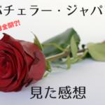 美女25人の醜い争い?世界的人気の恋愛番組バチェラー・ジャパンを見た感想